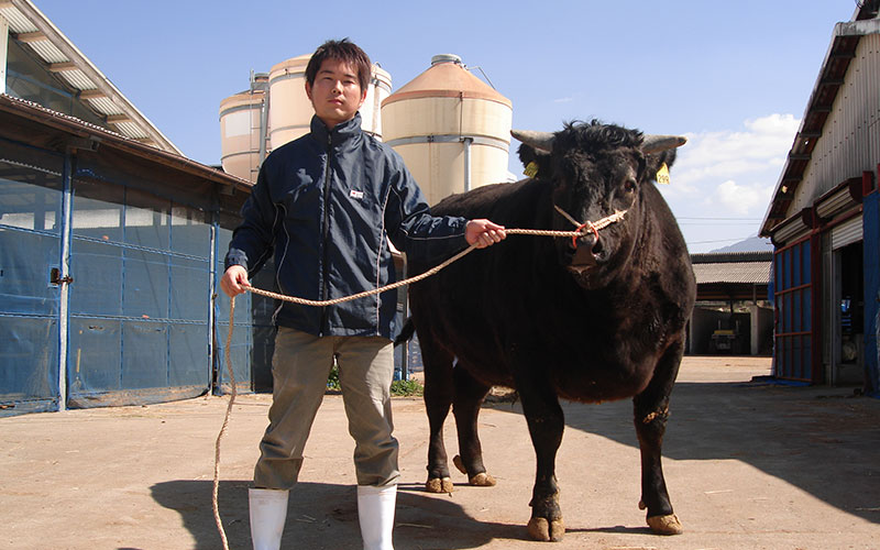 兄と兄が育てた牛